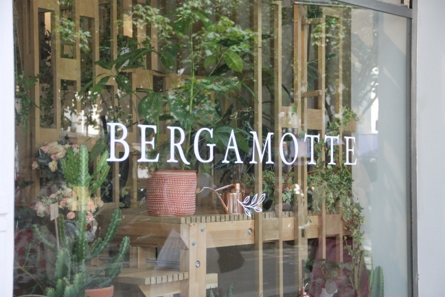 bergamotte pop up